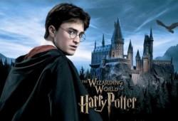 «Гарри Поттер» вырос, возмужал, сменил имидж и амплуа